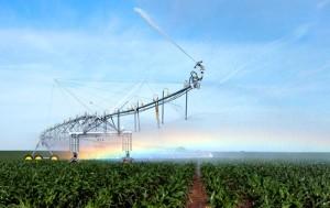 tl-pivot-crops